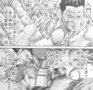 お相撲さんとキックボクサー